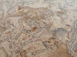 Tiled Mosaic at Sepphoris (aka Zippori)