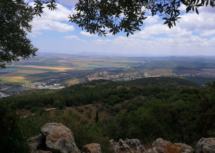 Jezreel Valley from Mt. Carmel